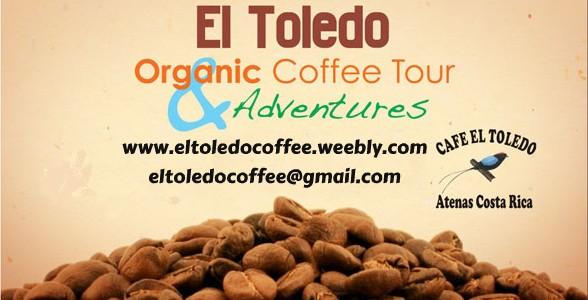 El Toledo Organic Coffee Tour